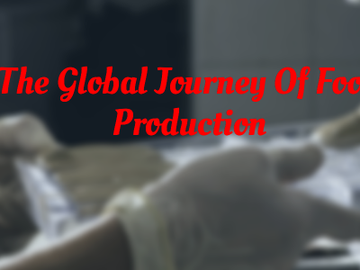 The Global Journey Of Food Production
